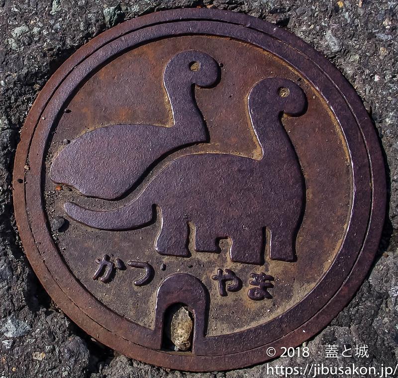 084kyouryu_manhole