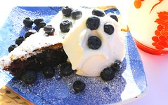 THE COMPLETE IDIOT'S GUIDE TO THE VERY BEST BLUEBERRY CAKE