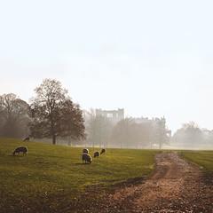 Chatsworth