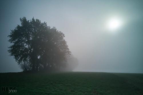 181125_Herbst_Nebel(11)