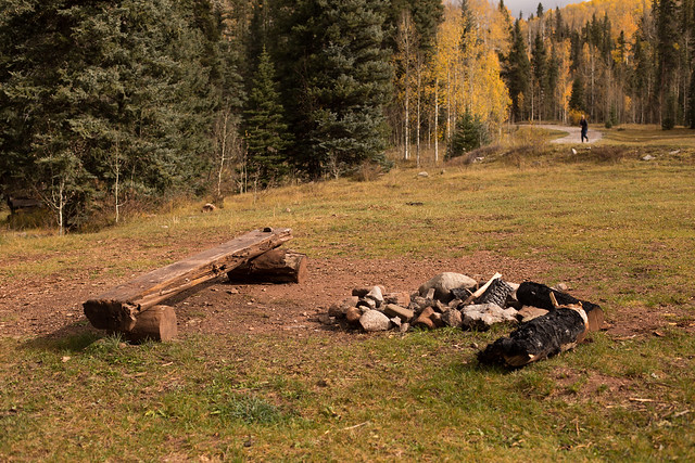 Post-Campfire