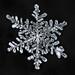Snowflake-a-Day No. 7 by Don Komarechka