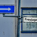 Freyjugata