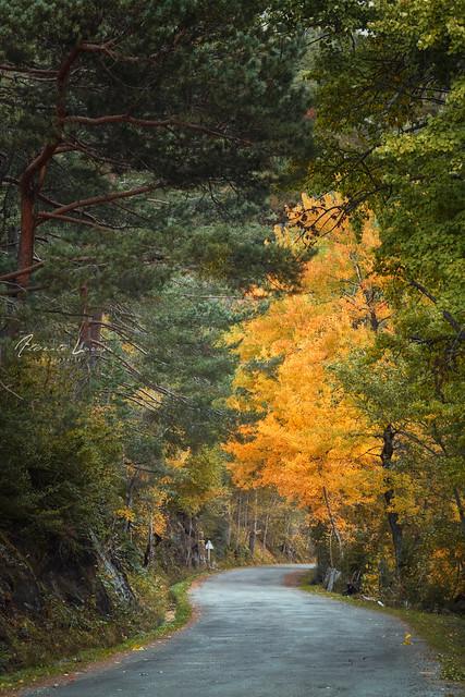 Carretera a La Sarra, Canon EOS 5D, Canon EF 24-105mm f/4L IS USM