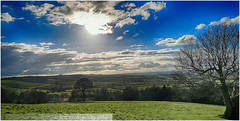 View from Dyrham Park