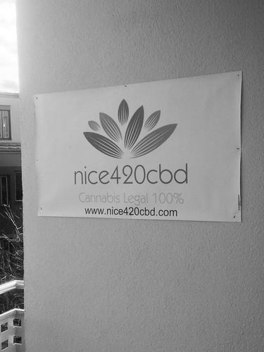 Logo. Firma nice420cbd