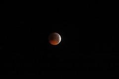 L'éclipse de lune du 21 janvier 2019 photographiée à Auxerre - Photo of Gy-l'Évêque