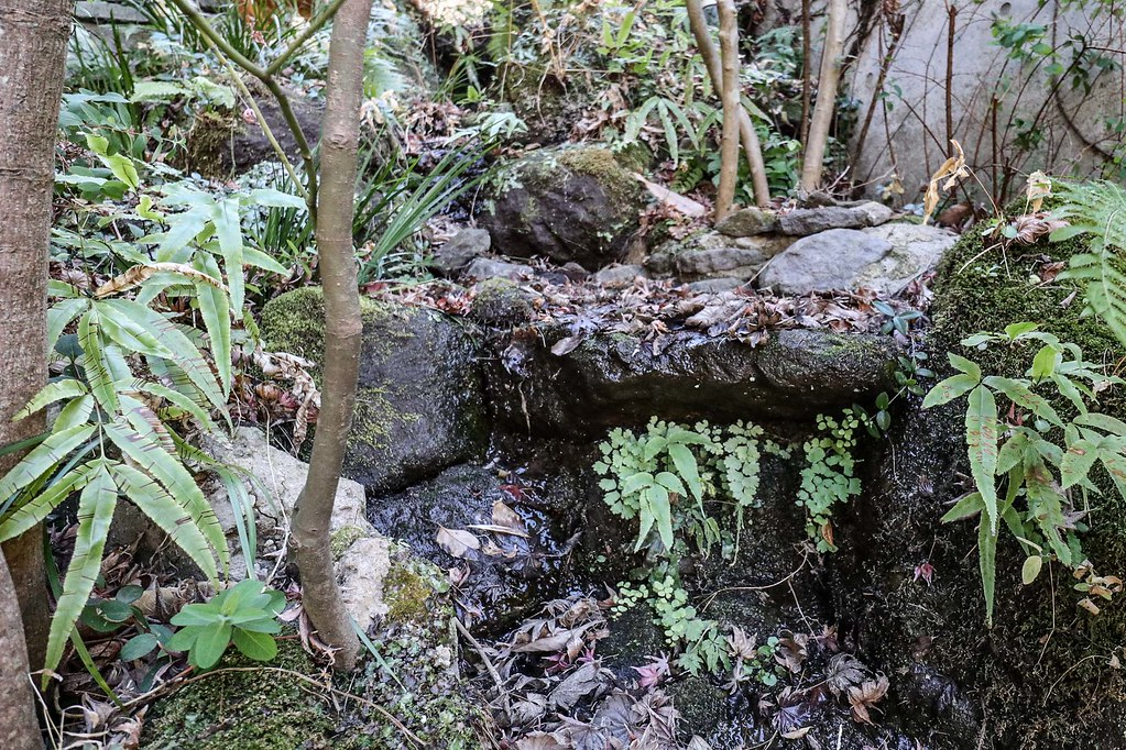 鎌倉の別荘