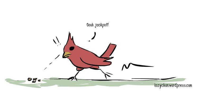 cardinal finds seeds