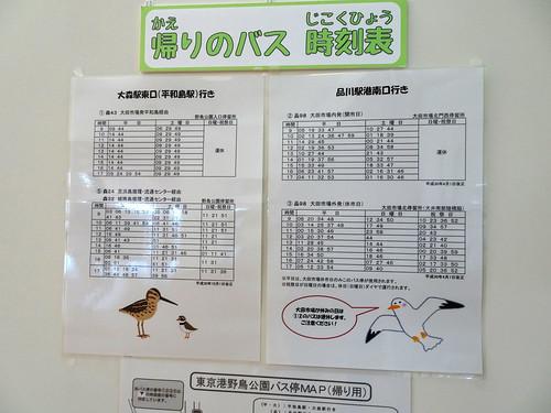 東京港野鳥公園のバス