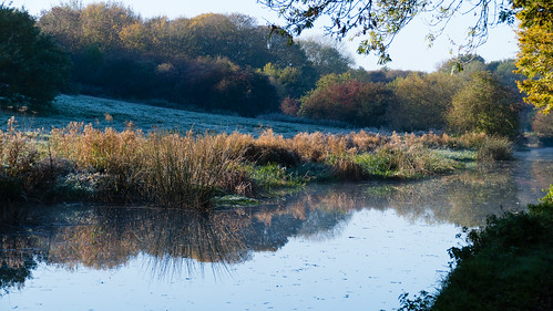First frost of autumn: canal at Compton