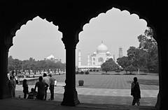 India 81