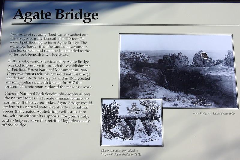 IMG_7783 Agate Bridge