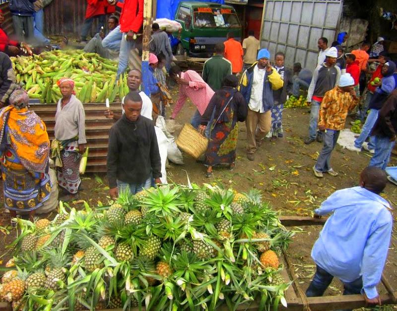 My tanzania trip started in Kenya