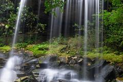 Waterfall at phukradung national park
