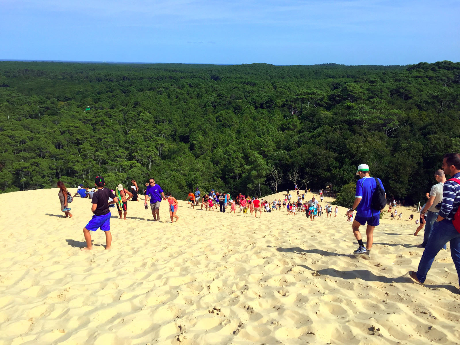 Dune du Pilat Francia Burdeos dune du pilat - 44217263880 99c2cc4132 h - Dune du Pilat, la duna de arena más alta de Europa