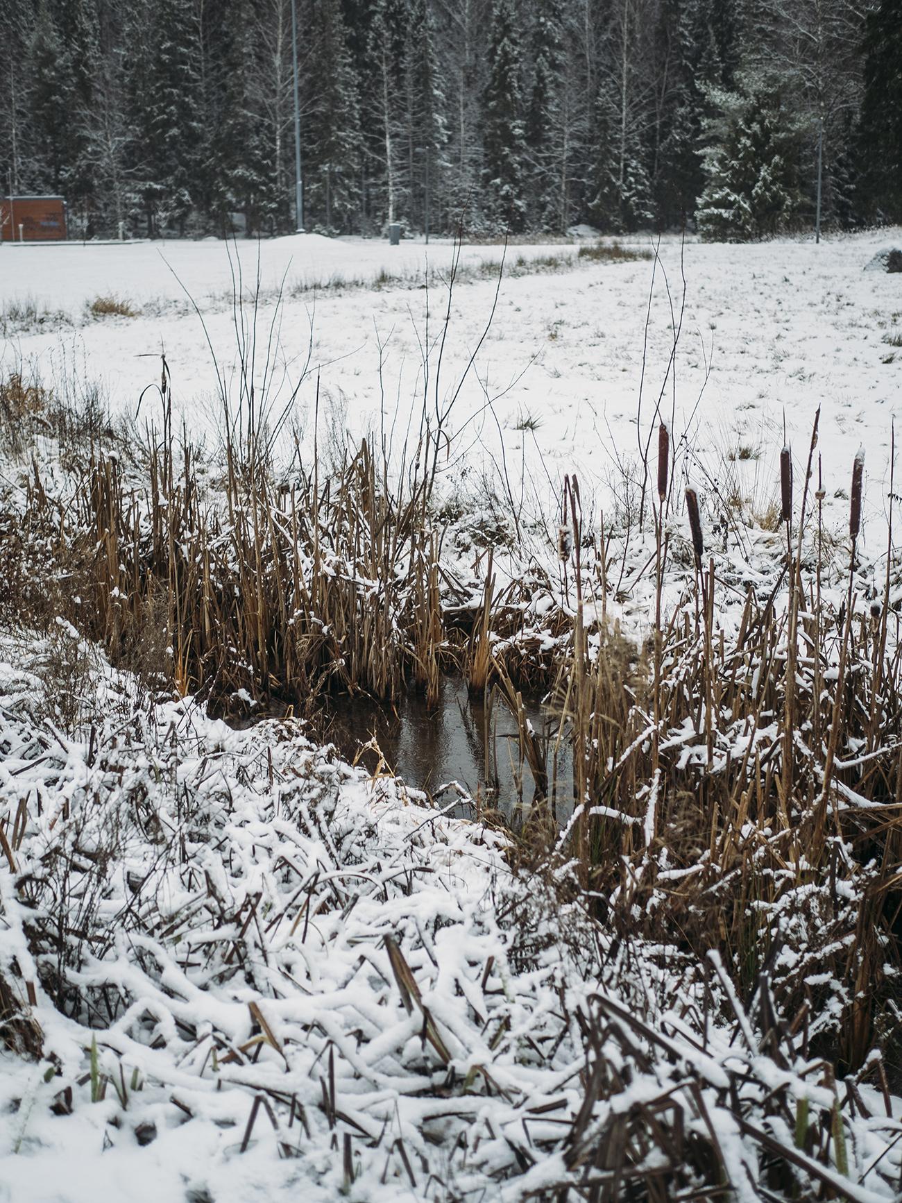 lumiukko2