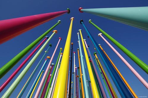 IMGP0006 Needles