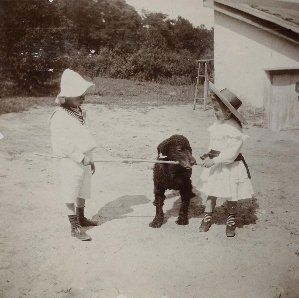 Сергей и Прасковья Шереметевы с собакой