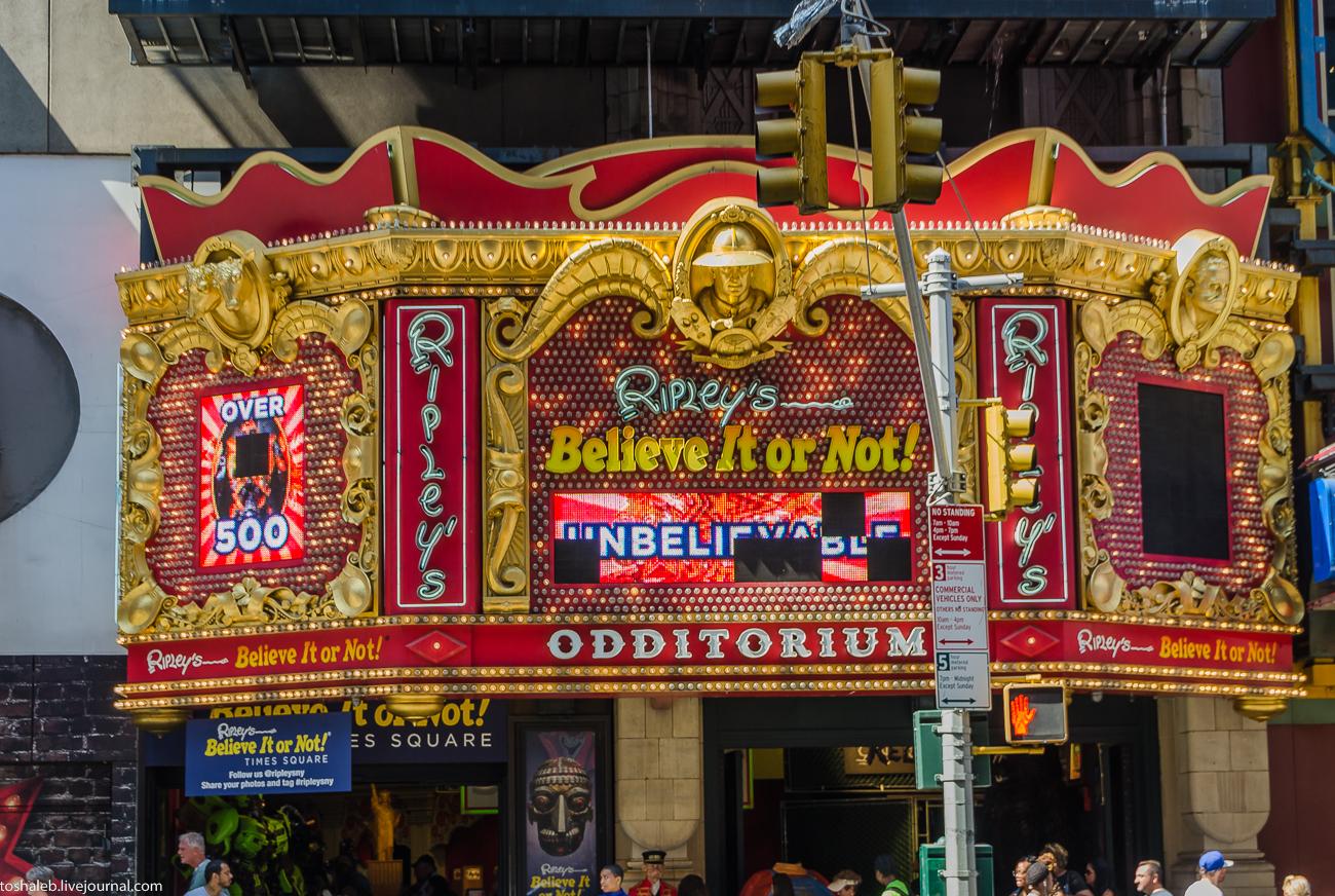Нью-Йорк_Central Park_Times Square-75