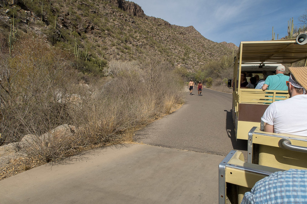 Tram ride in Sabino Canyon | Tucson Arizona