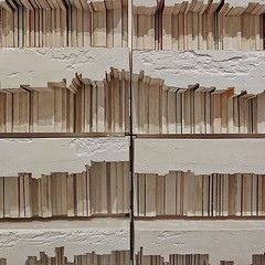 Rachel Whiteread, library void