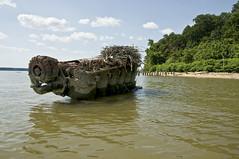 Potomac River Shipwreck