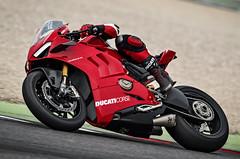 Ducati 1000 Panigale V4 R 2019 - 6