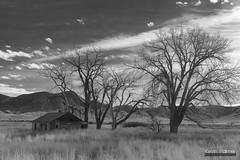 SE Montana Abandoned Houses