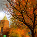 Autumn in Deepdale, Preston