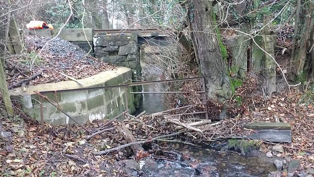 Debris in the stream