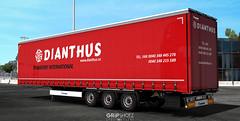 Dianthus International Company skin for Krone Megaliner [ETS2]