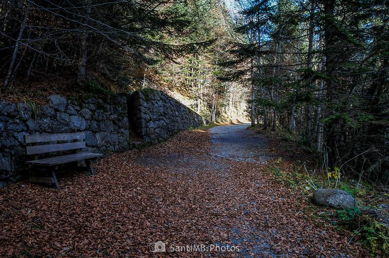 Camino al Área de los Ulehs deth Joèu
