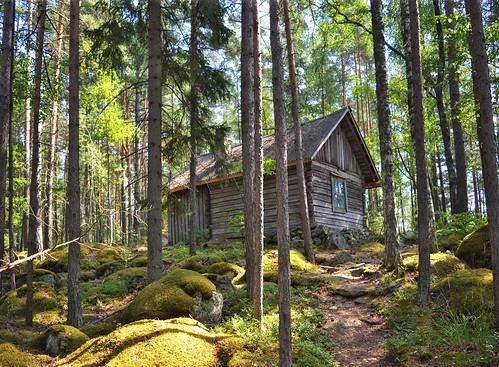 Hermit's hut on Koreakoivu island (also known as Harhu), lake Päijänne.