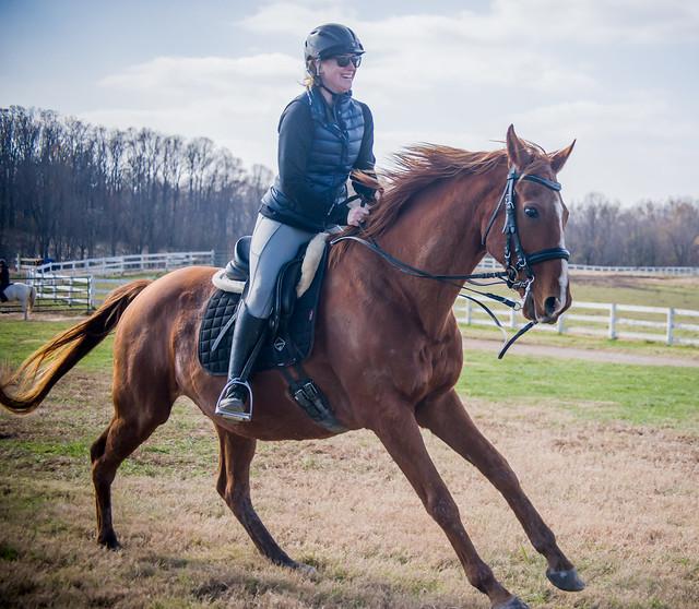 20181116 Austen's Ponies_38