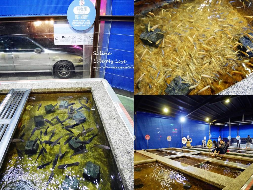 宜蘭礁溪溫泉魚泡腳池推薦