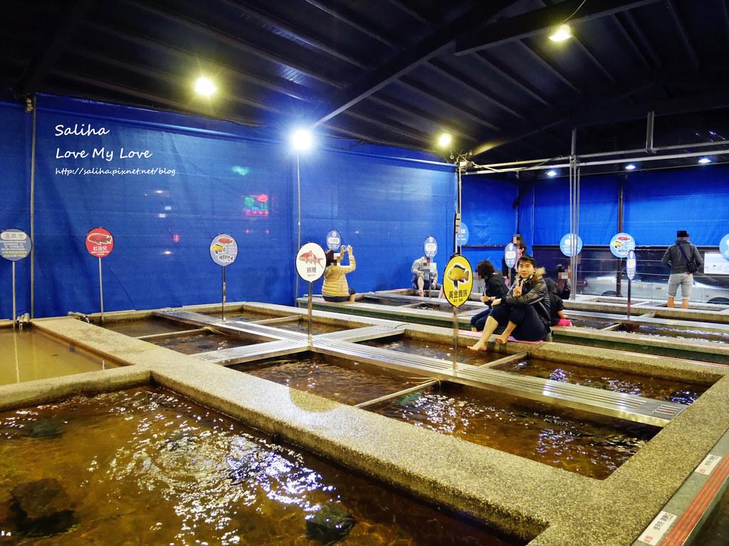 宜蘭礁溪一日遊景點推薦礁溪湯圍溝重口味溫泉魚去角質 (20)