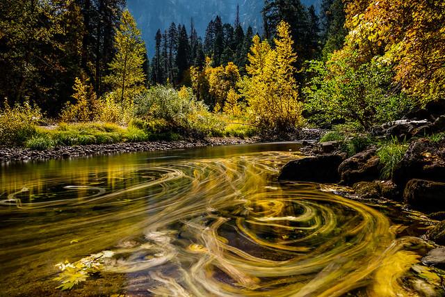 Streams of Fall Color