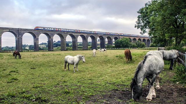 222013 and 222017 Harringworth Viaduct