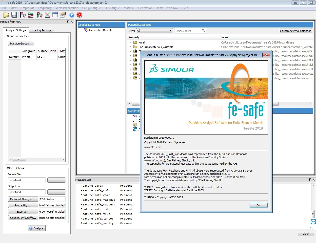 Working with DS SIMULIA FE-safe full license
