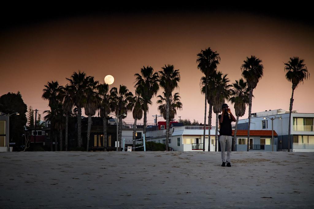 Venice Beach Scene