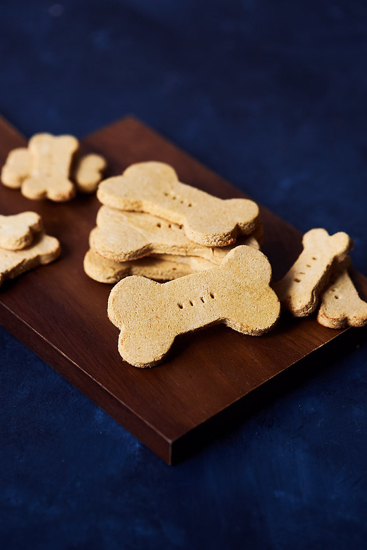 Grain-free Salmon Pumpkin Dog Treat Recipe