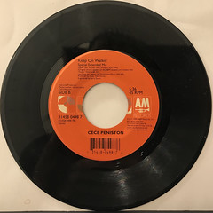CECE PENISTON:I'M IN THE MOOD(RECORD SIDE-B)