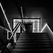 Geometrie luminose