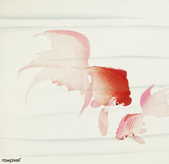 Gold fish (1900 - 1936) by Ohara Koson (1877-1945). Original from The Rijksmuseum. Digitally enhanced by rawpixel.
