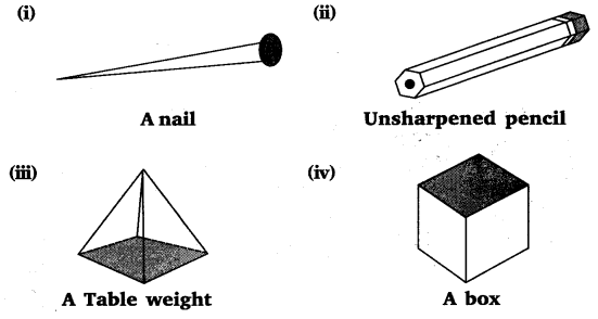 NCERT Solutions for Class 8 Maths Chapter 10 Visualising Solid Shapes 21
