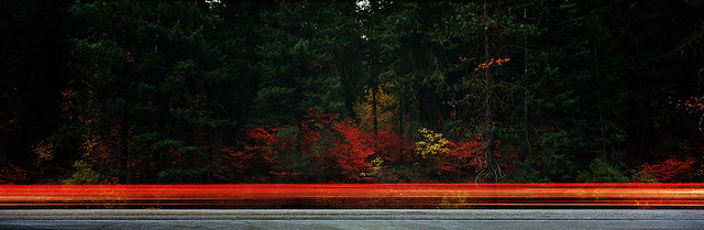 Passing traffic paying tribute to the fall colors