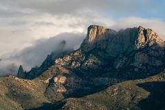 1901 Table Mountain