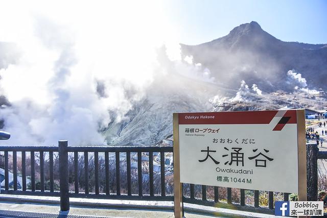 箱根纜車+大湧谷-24