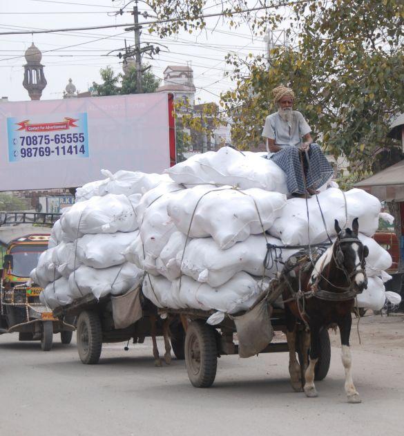DSC_9989IndiaAmritsarGrootVrachtvervoer
